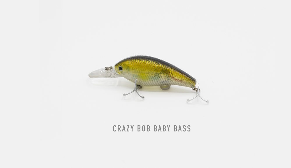 Crazy bob baby bass first fish online for Baby bass fish